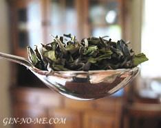 銀の芽紅茶店 ダージリンの茶葉
