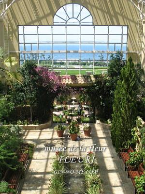 花のミュージアム フローリー