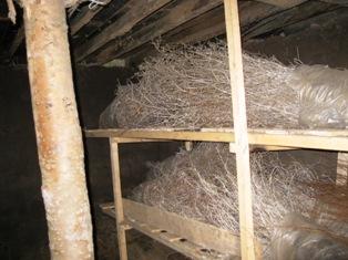 地下室 2