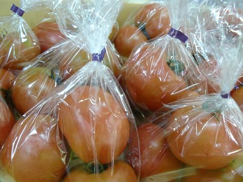 丹羽さんのトマト