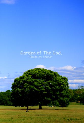 66-garden1.jpg