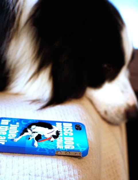 iphone3_M0A8543.jpg