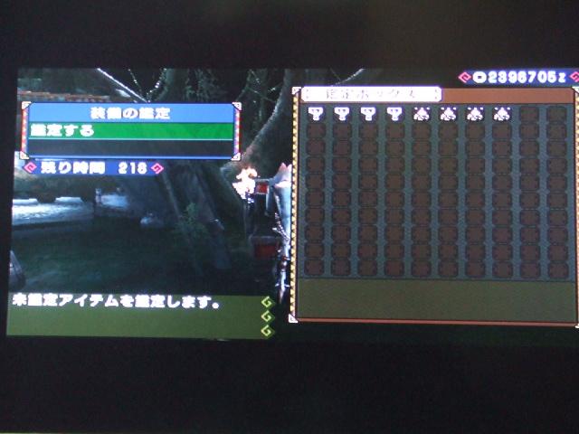 DSCF0863.jpg