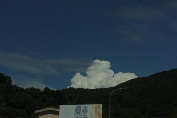 natuta3.jpg