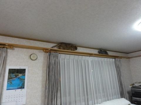 困難01(2012.06.19)