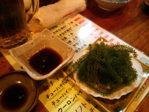 海ぶどう(2012.08.09)