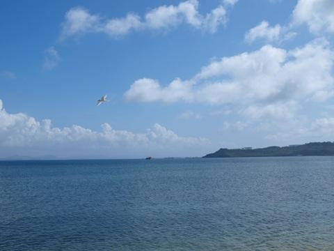 海中道路へ04(2012.08.11)