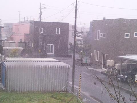 初雪の日01(2012.11.18)