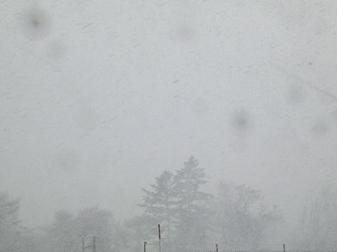 シーズン初吹雪!03(2012.11.27)
