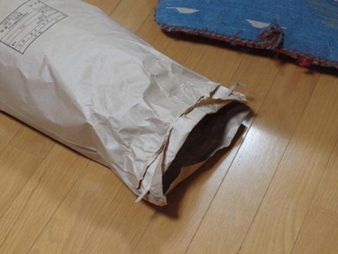 気配01(2012.12.03)