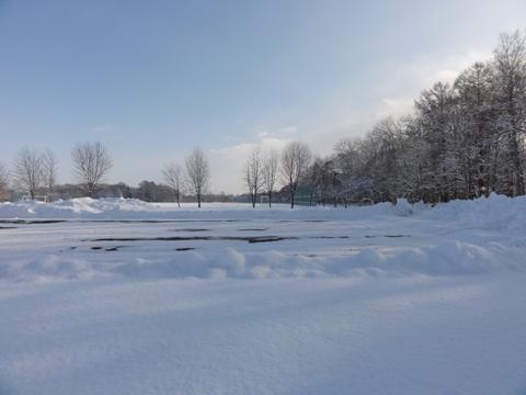 雪景色(2012.12.13)