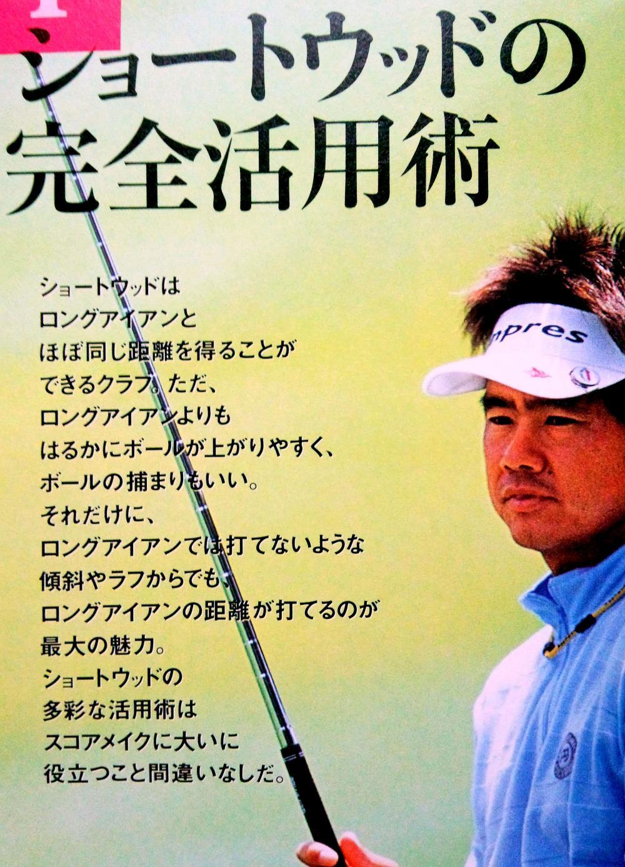 藤田寛之ショートウッド2