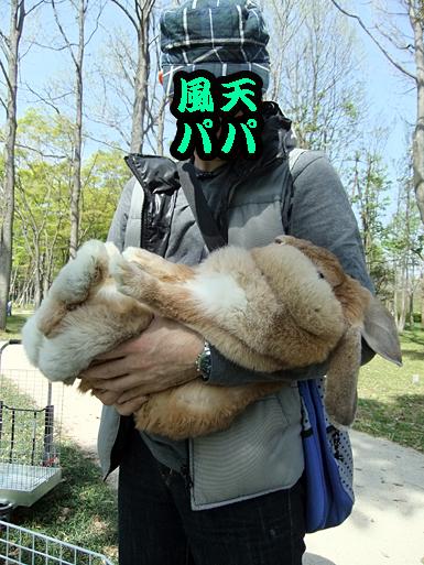 米子抱っこ