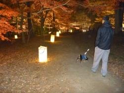 kotaroと灯籠