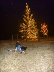 kotaroとツリー