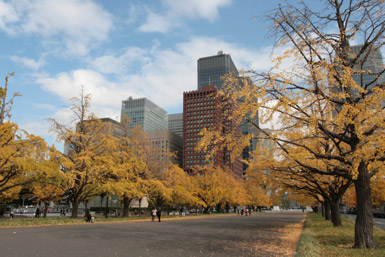 20101120-2.jpg