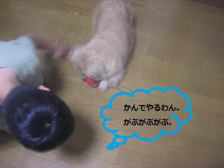 20120510025.jpg