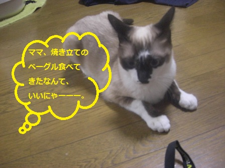 20120605001.jpg