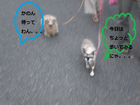 20120910021.jpg