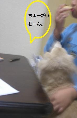 20121015011.jpg