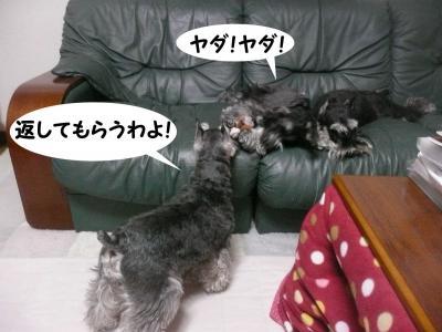 雅っ子アンアン4月28日3