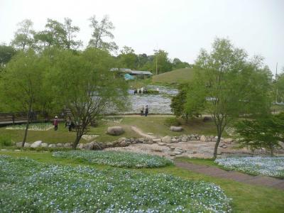 まんのう公園5月4日4