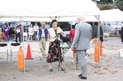 2011.10島根ショー Jクラス1