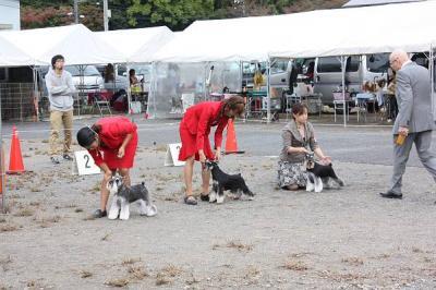 2011.10島根ショーYGクラス3