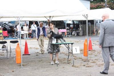 2011.10島根ショーYGクラス1