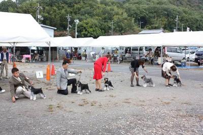 2011.10島根ショーBOB戦1