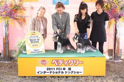 2011中国インター ノア&あさひ写真