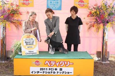 2011中国インターあさひ写真