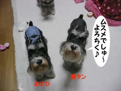 雅&あさひ12月17日