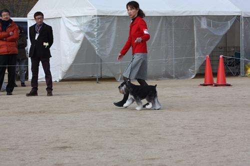 ガムシャラ松山ショー12月14日2