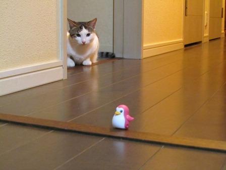 ペンギン隊長2