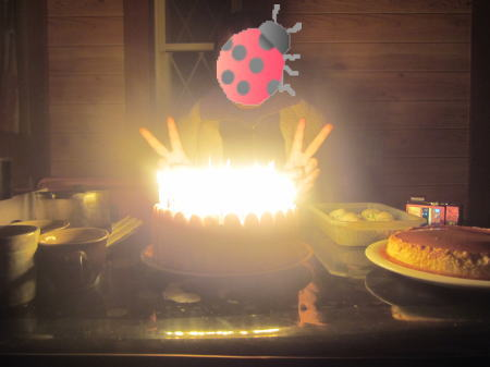 ケーキのろうそく