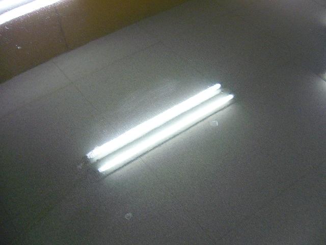 P1210112-585.jpg