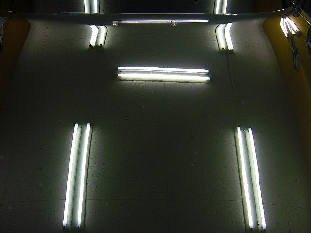 P1210152-585.jpg