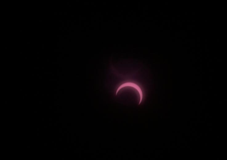 トリミング日食