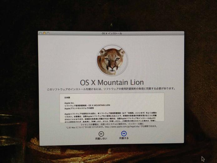 oscmountainlion