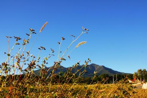 秋の空 060