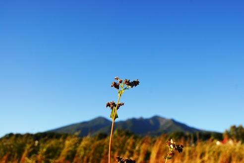 秋の空 059
