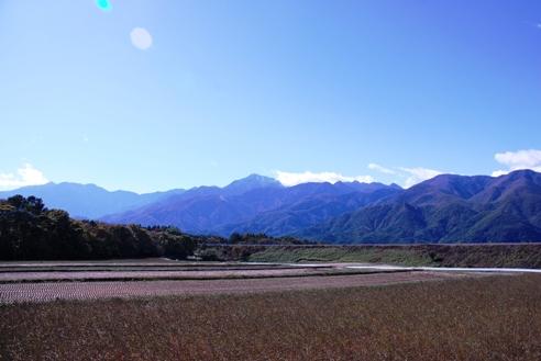 初冠雪2010 002