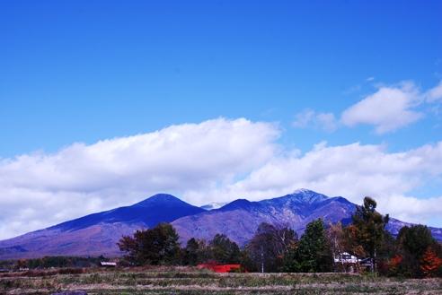 初冠雪2010 010