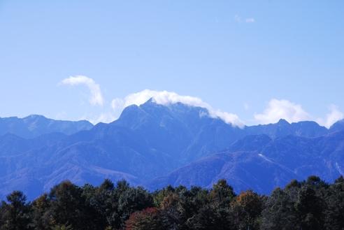 初冠雪2010 014