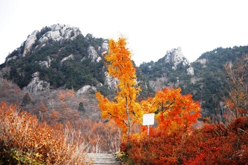 みずがき山自然公園 021