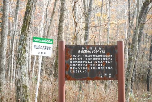 みずがき山自然公園 047