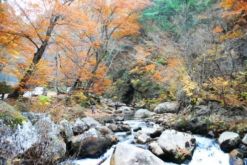 みずがき山自然公園 069