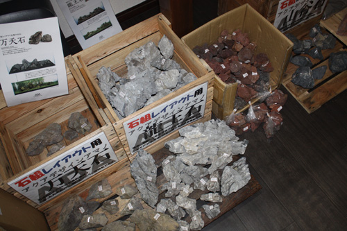 アクアデザインアマノ 龍王石 東海 岐阜 熱帯魚 水草 観葉植物販売 Grow aquarium