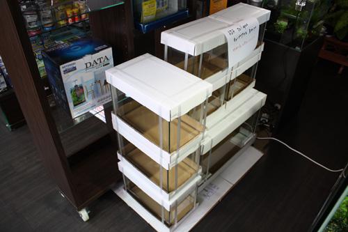 Do!aqua キューブグラスBタイプ 入荷 東海 岐阜 熱帯魚 水草 観葉植物販売 Grow aquarium
